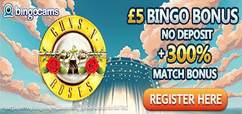 You Have £5 FREE No Deposit at Bingocams
