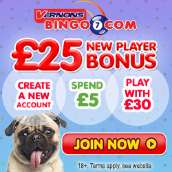 Most Popular Bingo Sites - Vernons Bingo