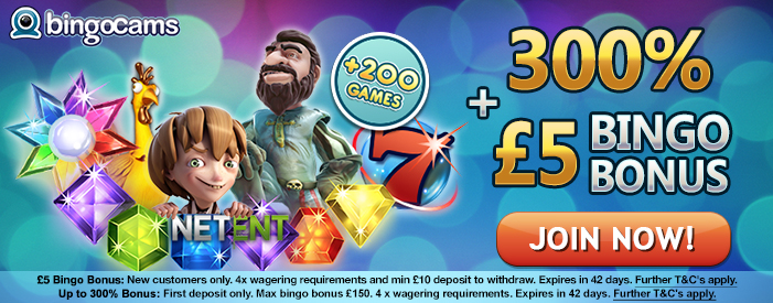 Why Players Choose Top Bingo Sites In UK?