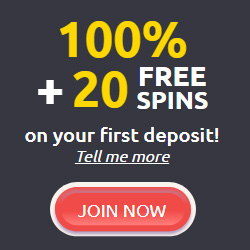 Most Popular Bingo Sites - Wild Spins