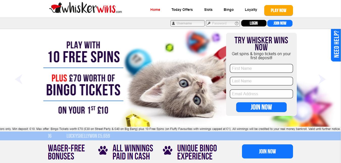 Whisker Wins